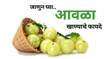 आवळा खाण्याचे फायदे | (आमला) Amla Benefits in Marathi