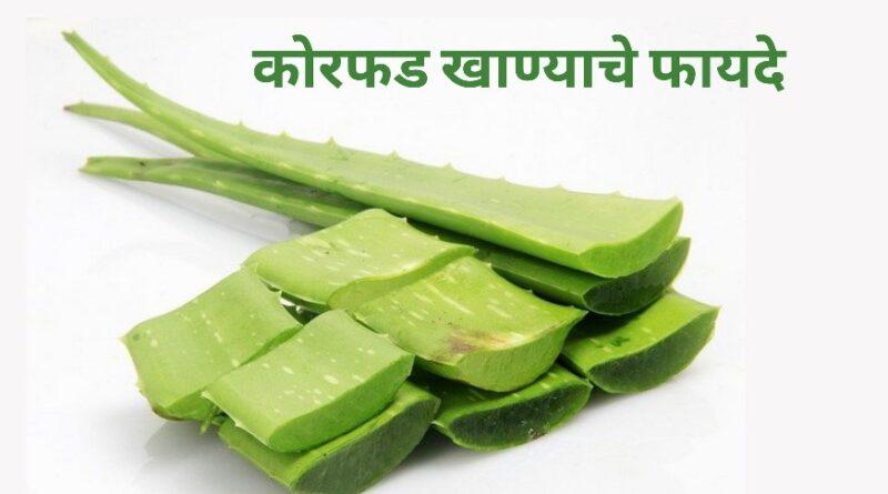 कोरफड खाण्याचे फायदे | Benefits of Eating Aloe Vera in Marathi