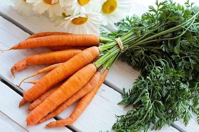 गाजर खाण्याचे फायदे   Carrot Benefits in Marathi