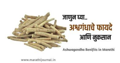 अश्वगंधाचे फायदे आणि नुकसान | Ashwagandha Benefits in Marathi