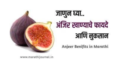 अंजीर खाण्याचे फायदे आणि नुकसान| Benefits of Anjeer in Marathi