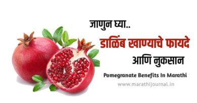 डाळिंब खाण्याचे फायदे आणि नुकसान | Benefits of Pomegranate in Marathi